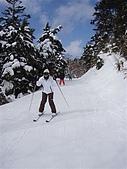 950128日本志賀滑雪(人物篇)ski:P1312195