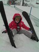 20120125日本苗場滑雪五日:無尾熊
