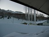 970127日本志賀滑雪五日(Joe):SANY2499.JPG