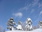 970127日本志賀滑雪五日(Requel):DSC01152.JPG