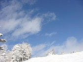 970127日本志賀滑雪五日(Requel):DSC01167.JPG