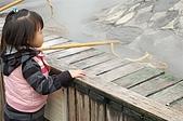 09年又白又凍的太平山:DSC_0012.JPG