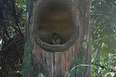 09我在巴里島天氣晴:DSC_0631.JPG
