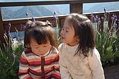 曾盧姐妹聖誕遊清境:照片 487.jp