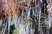09年又白又凍的太平山:DSC_0301.JPG