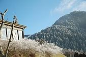 09年又白又凍的太平山:DSC_0158.JPG