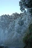 09年又白又凍的太平山:DSC_0081.JPG