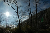 09年又白又凍的太平山:DSC_0174.JPG