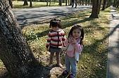 曾盧姐妹聖誕遊清境:照片 550.jp