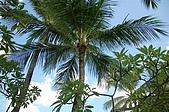 09我在巴里島天氣晴:DSC_0369.JPG