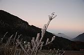 09年又白又凍的太平山:DSC_0100.JPG