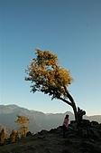 曾盧姐妹聖誕遊清境:照片 299.jp