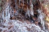 09年又白又凍的太平山:DSC_0224.JPG