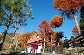 曾盧姐妹聖誕遊清境:照片 384.jp