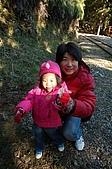 09年又白又凍的太平山:DSC_0232.JPG