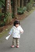 溪頭明山童話木屋:DSC_0021.JPG