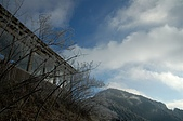 09年又白又凍的太平山:DSC_0124.JPG