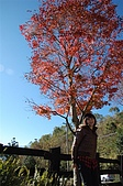 曾盧姐妹聖誕遊清境:照片 398.jp