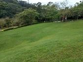 心鮮森林:IMG_20190323_110849396_HDR.jpg