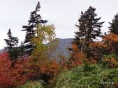 弥陀ヶ原立山カルデラ展望台:2012_1011_091532.JPG