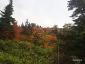 弥陀ヶ原立山カルデラ展望台:2012_1011_091629.JPG
