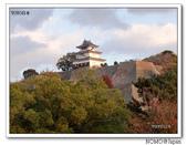 丸龜城:2013_1122_162011.JPG