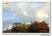 丸龜城:2013_1122_162107.JPG