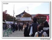 東福寺通天橋紅葉:2011_1125_091852.JPG