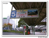 鳥取花回廊:2010_1109_124257.JPG