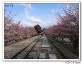 2012年關西追逐櫻花之旅-京都:2012_0407_081059.JPG