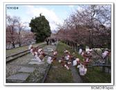 2012年關西追逐櫻花之旅-京都:2012_0407_081236.JPG