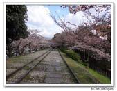 2012年關西追逐櫻花之旅-京都:2012_0407_081438.JPG