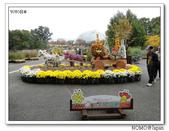 鳥取花回廊:2010_1109_132525.JPG