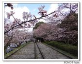 2012年關西追逐櫻花之旅-京都:2012_0407_081539.JPG