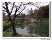 化解歷史恩怨的彥根城櫻花:2011_1123_115918.JPG