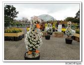 鳥取花回廊:2010_1109_133313.JPG