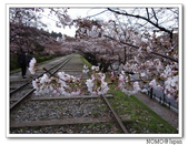 2012年關西追逐櫻花之旅-京都:2012_0407_081915.JPG