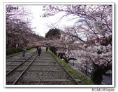 2012年關西追逐櫻花之旅-京都:2012_0407_081948.JPG