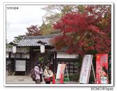 化解歷史恩怨的彥根城櫻花:2011_1123_115909.JPG