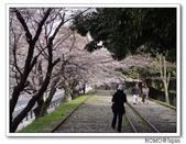 2012年關西追逐櫻花之旅-京都:2012_0407_082210.JPG
