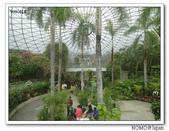 鳥取花回廊:2010_1109_134139.JPG
