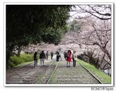 2012年關西追逐櫻花之旅-京都:2012_0407_082249.JPG