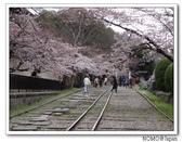 2012年關西追逐櫻花之旅-京都:2012_0407_083022.JPG