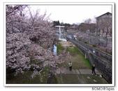 2012年關西追逐櫻花之旅-京都:2012_0407_083648.JPG