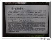 化解歷史恩怨的彥根城櫻花:2011_1123_120202.JPG