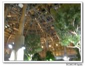 釧路煉瓦炉ばた:2007_0827_180842AA.JPG