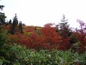 弥陀ヶ原立山カルデラ展望台:2012_1011_094214.JPG