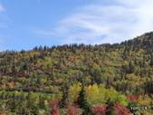 弥陀ヶ原立山カルデラ展望台:2012_1011_101038.JPG