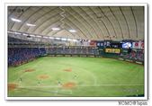 東京巨蛋看球:2014_0715_175328.JPG