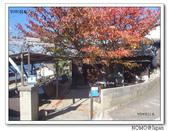 男木島:2013_1123_105227.jpg